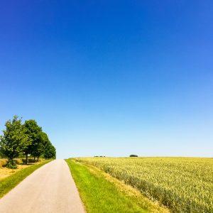 Wunderbarer Radweg kurz hinter der mecklenburgischen Grenze. Hier war die Rennradfahrerwelt noch in Ordnung.